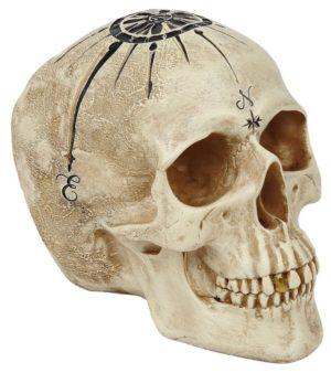 My Inner Compass Skull